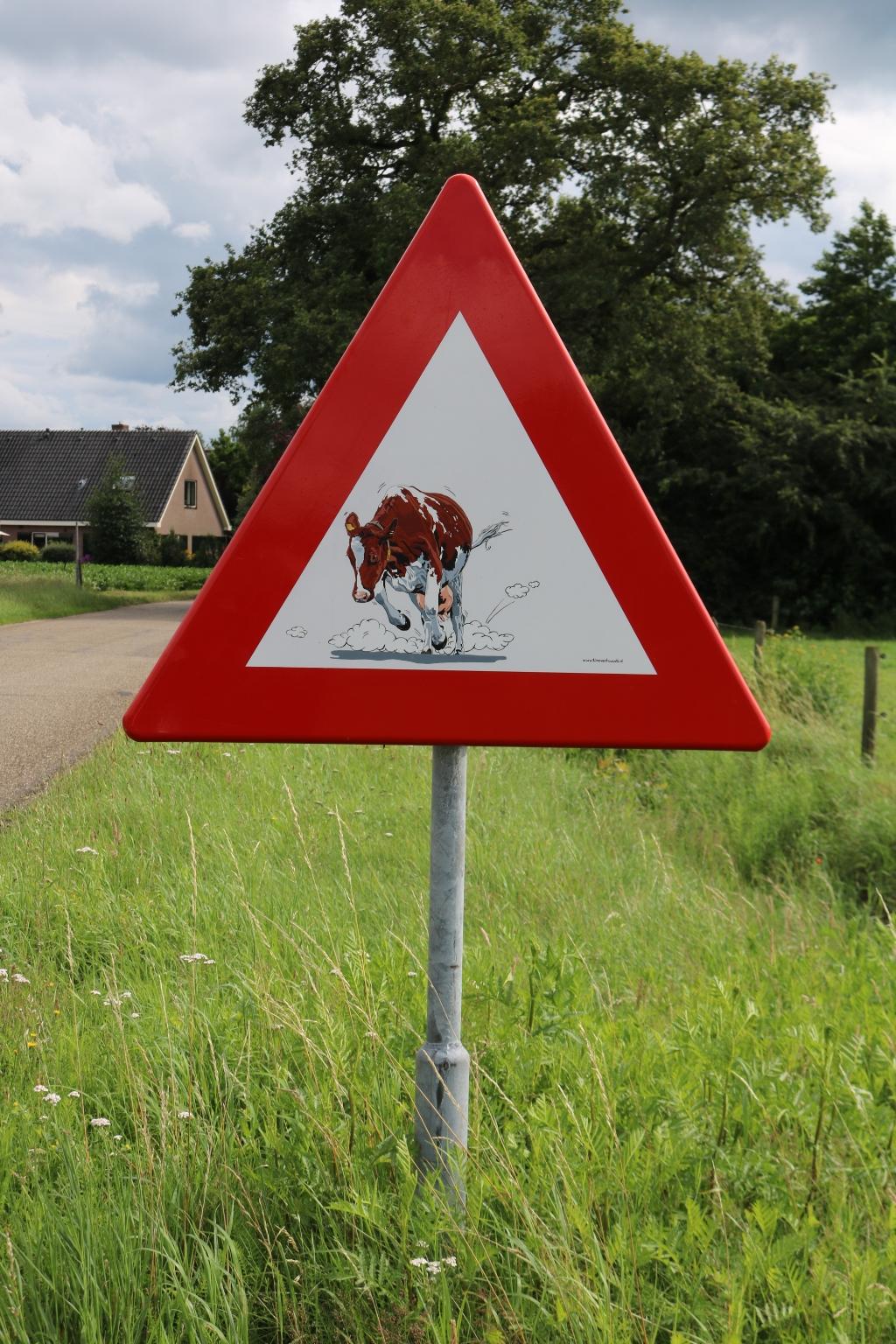 Dit bord, met Wendie 19 erop, is inmiddels het derde dat werd gestolen aan de Dochterenseweg.  Foto: Arjen Dieperink Arjen Dieperink © Achterhoek Nieuws b.v.