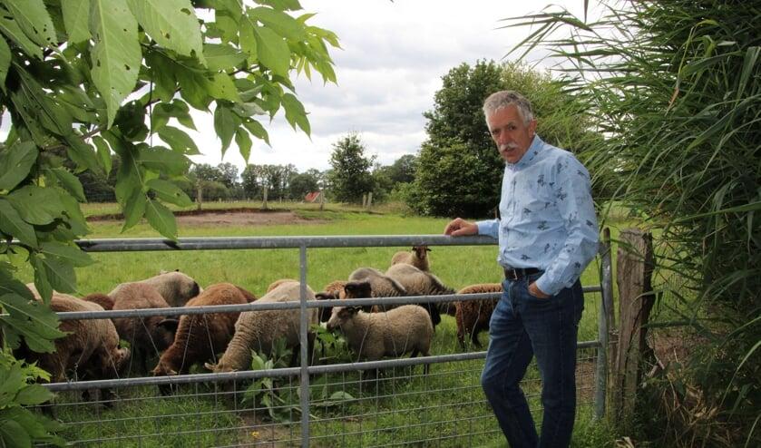 Frits Küpers bij de schapen op zijn boerderij. Foto: Lydia ter Welle