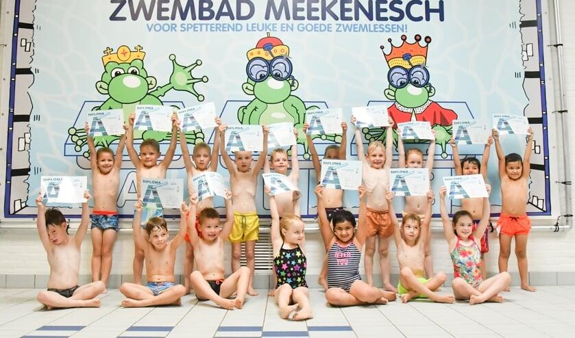Foto: Zwembad Meekenesch