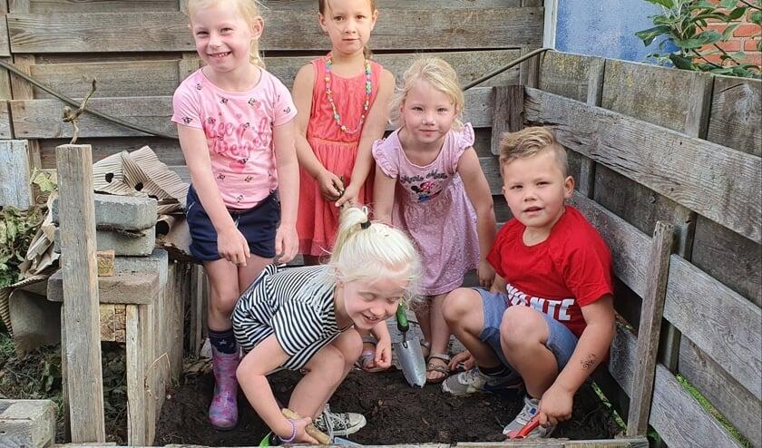 Leerlingen van groep 1 en 2 zoeken wormen in de composthoop. Foto: Rob Weeber