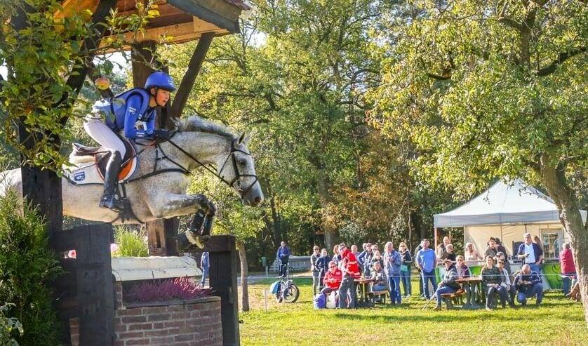Achterhoeks Hippisch Festijn. Foto: PR
