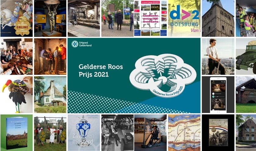Collage van de projecten. Foto: PR