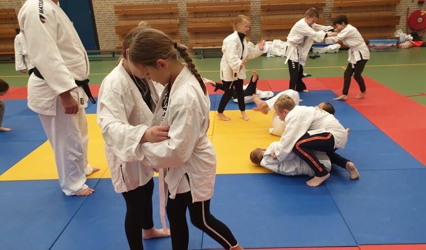 <p>Kennismaken met judo via Sportintro in Neede. Foto: PR</p>