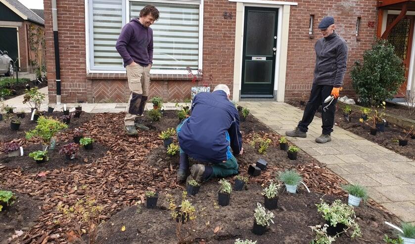 Vrijwilligers knappen een tuin op met verschillende planten om insecten aan te trekken en water vast te houden.