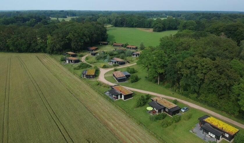 <p>Aangrenzend aan Landgoed Hackfort staan op ruime kavels de 25 zwarte houten vakantiehuizen &nbsp;Foto: PR </p>