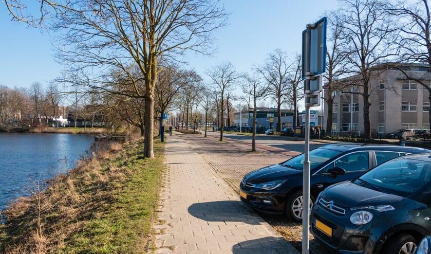 <p>Om plaats te maken voor meer groen moeten 26 parkeerplekken worden verwijderd. &nbsp;Foto: Henk Derksen</p>