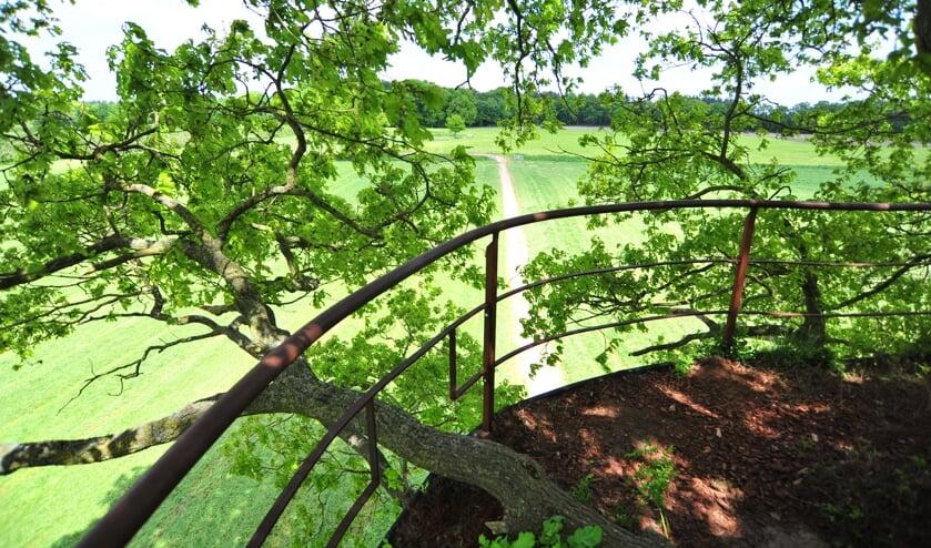 De boomtuin in betere tijden. Foto: PR