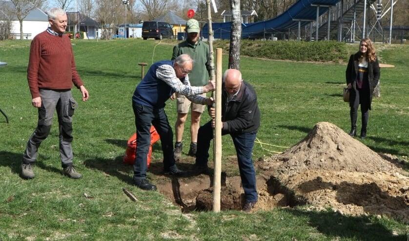 <p>Jan Langeler en Herman Eggink plaatsten de nieuwe boom op het terrein van het Leussinkbad. Foto: PR</p>