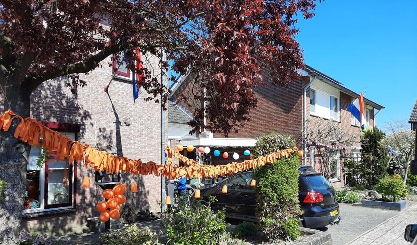 <p>De winnaar van de wedstrijd 'versier je huis' in Steenderen is Bram Lebbink. Eigen foto</p>
