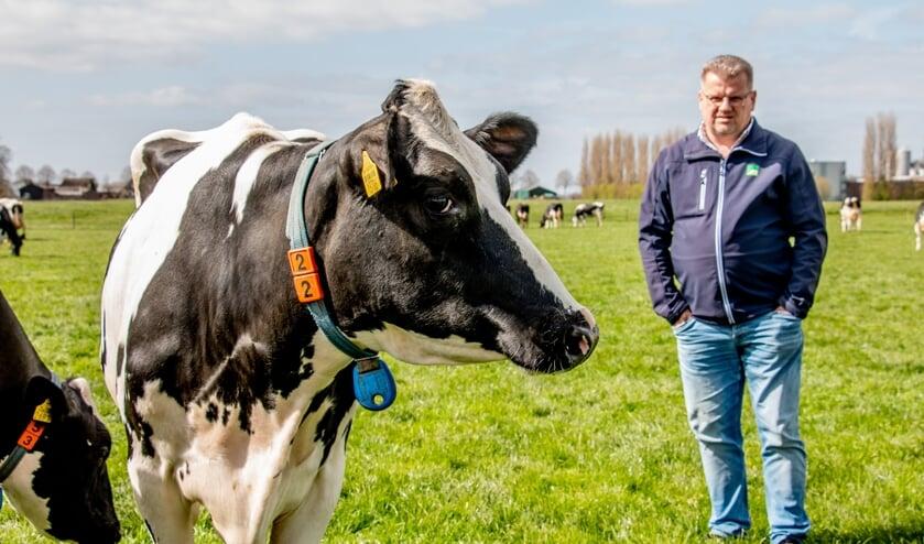 <p>Wim Boschloo kijkt vol bewondering beoordelend in de wei van broer Hans naar zijn favoriet, een zwartbonte koe. Foto: Liesbeth Spaansen</p>