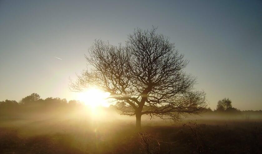 <p>Zonsopgang over de Gorsselse Heide. Alleen voor vroege vogels. Foto: PR</p>