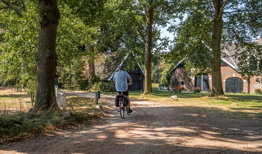 De Fiets4daagse is ruim twee maanden opgeschoven. Liefhebbers kunnen nu van 31 augustus tot en met 3 september meefietsen door het Winterswijkse buitengebied. Foto: Jacob Doornheim.