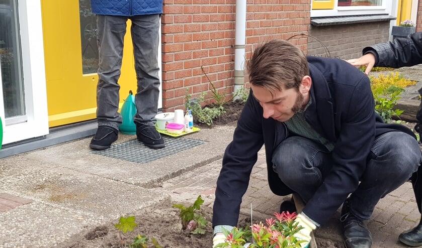 <p>Wethouder Paul Hofman zet een plant in de tuin, als officieel startsein voor het project Sociaal Groen. Foto: Present Bronckhorst</p>