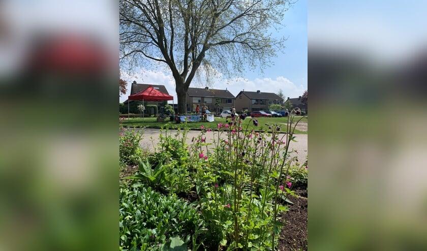 Succesvolle plantjesmarkt bij de Buurttuin aan de Prins Bernhardlaan in Steenderen. Foto: PR