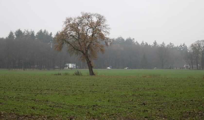 <p>De beoogde locatie in Klein Dochteren ging door felle protesten van de buurtbewoners niet door. Foto: Arjen Dieperink</p>