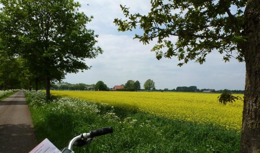 <p>Ook voor de maand juni heeft de VVV weer een mooie route beschikbaar. Foto: PR</p>