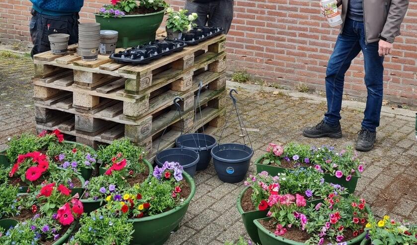 <p>Initiatiefnemer Reint Beunk, vrijwilliger Hans Langeler en sponsor Dinant Bergsma zetten de bloemetjes buiten. Foto Willy Hermans</p>