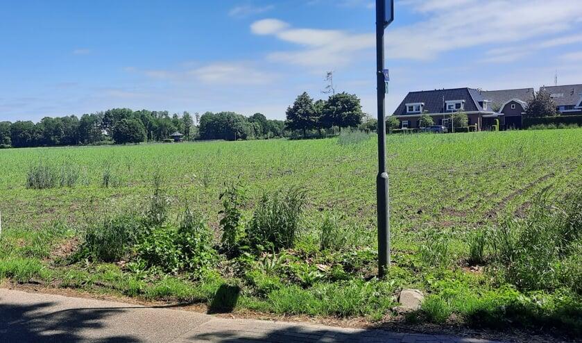 <p>Geen woningen op de hoek Pastoor Scheepersstraat/Kapelweg in Vragender door mogelijke archeologische resten in de grond. Foto: Kyra Broshuis</p>