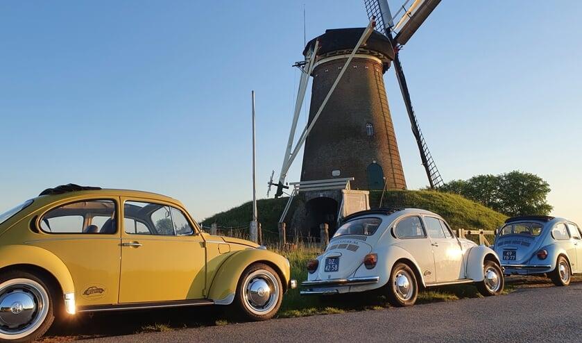 De VW Kevers trekken volop de aandacht in het Achterhoekse landschap.