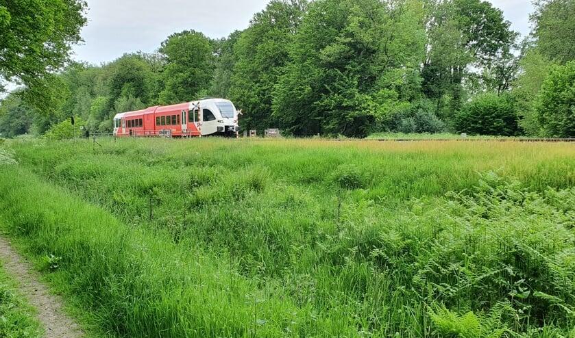 Trein passeert NABO Loorsteeg Ruurlo. Foto: Rob Weeber