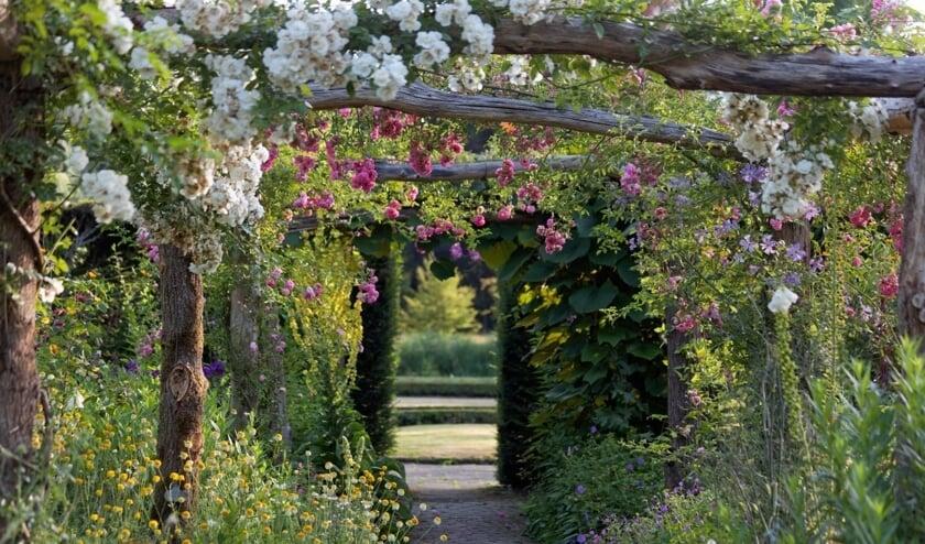 <p>Tuinen de Wiersse zijn te bezoeken tijdens de open dagen. Foto: PR</p>