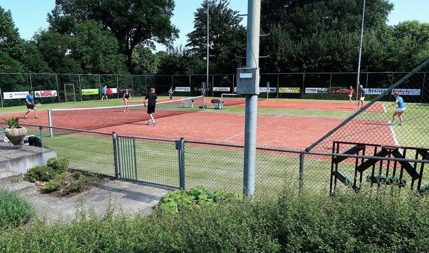 Een beeld van de finaledag van het tennistoernooi 'Lievelde Open'. Foto: Theo Huijskes