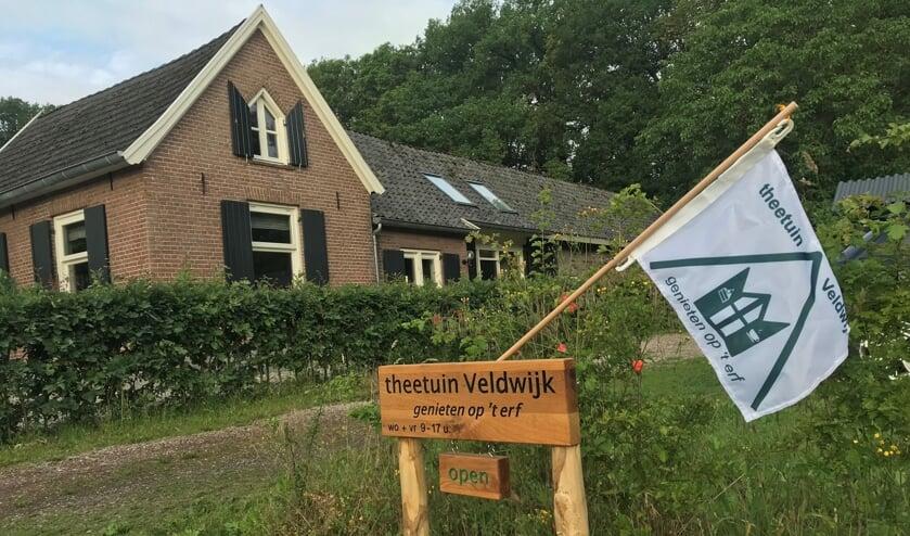 De theetuin van Veldwijk aan de Almenseweg 57. Foto: Ton Swagten