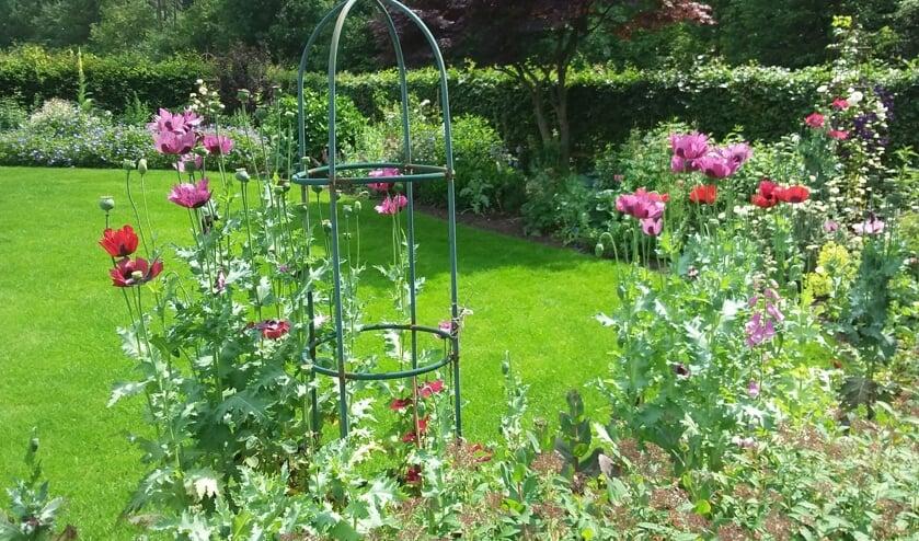 <p>De tuin van Jopie en Joke Tankink in Hummelo heeft een fraaie border met vaste planten. Eigen foto</p>