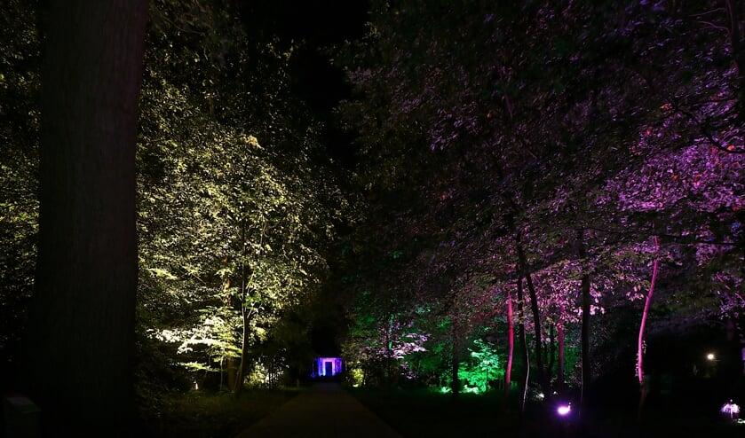 <p>Speciaal evenement &#39;Lichtpuntjes&#39; voor ouderen en mensen met een beperking. Foto: PR</p>