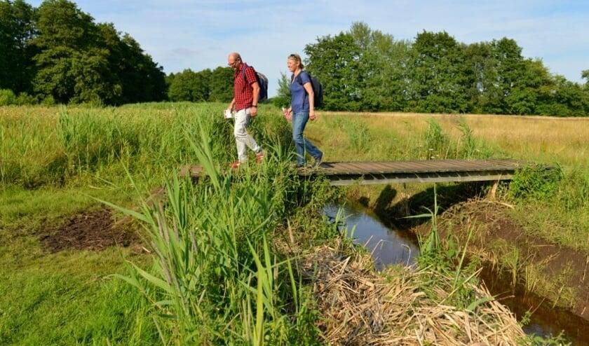 <p>Heerlijk wandelen door het historische Zieuwentse landschap. Foto: PR</p>