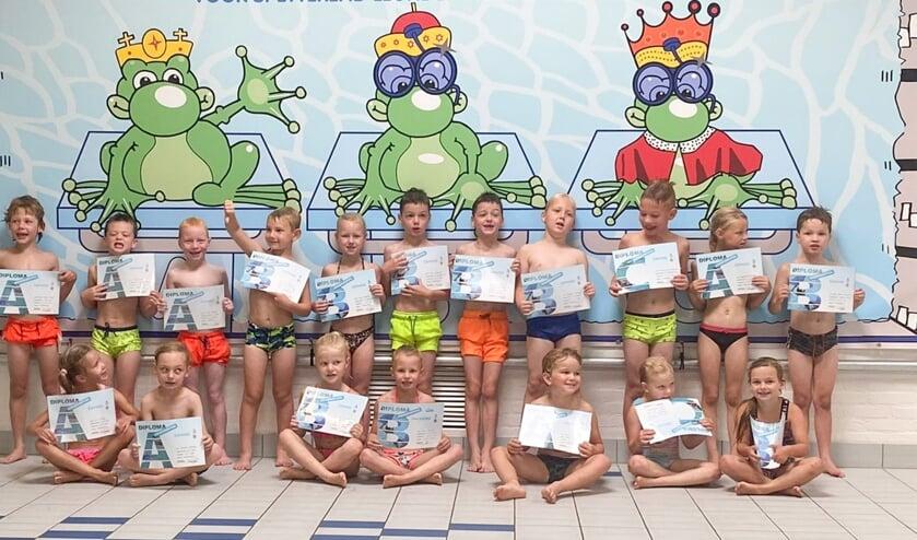 <p>Foto: Zwembad Meekenesch</p>