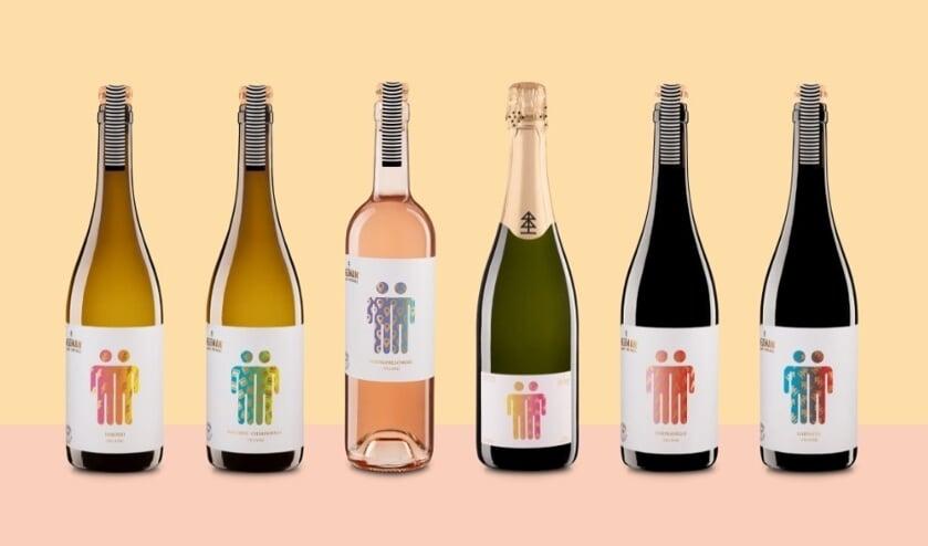 <p>De nieuwe serie Neleman wijnen die bij Jumbo verkrijgbaar zijn. Foto: PR</p>