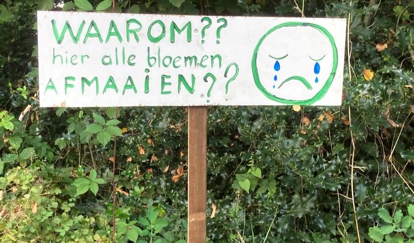 <p>Gerda Wisselink is verdrietig om het maaien van haar bloemenberm. Foto: Mirjam Rensink</p>