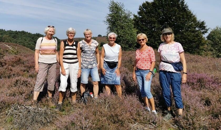 <p>Vrouwen van Nu Dikkie, Diny, Tonny, Nel, Jenny en Henny (v.l.n.r.) op de Posbank. Foto: PR</p>