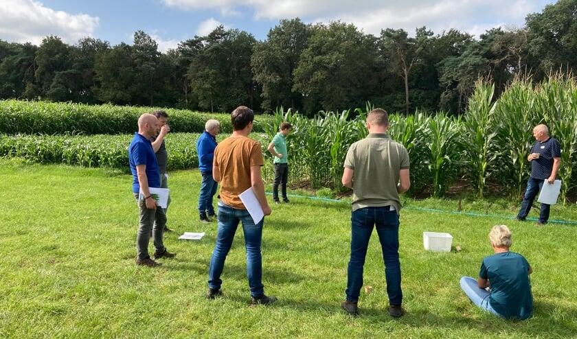 De bijeenkomst voor deelnemers en betrokken partijen van het project Waterwijs Boeren op Proefboerderij de Marke. Foto: PR