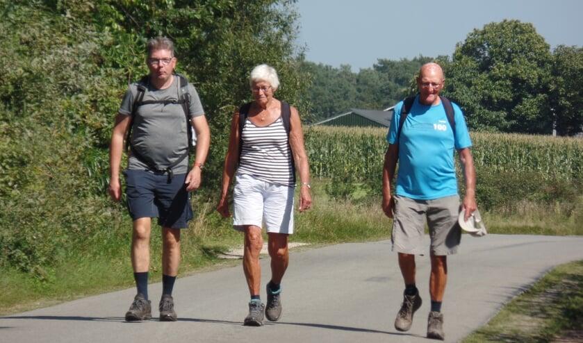 <p>De Friese wandelaars Romke van der Veen en Feikje en Wopke Schregardus in de Mosselse Enk die aan de dertig kilometer deelnamen. Foto: Jan Hendriksen</p>