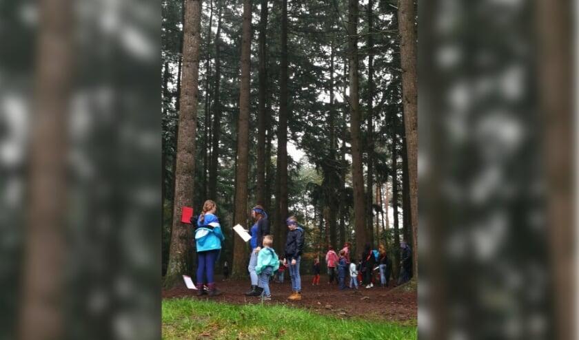Kinderen voeren in gemengde groepen opdrachten uit. Foto: F. Masselink