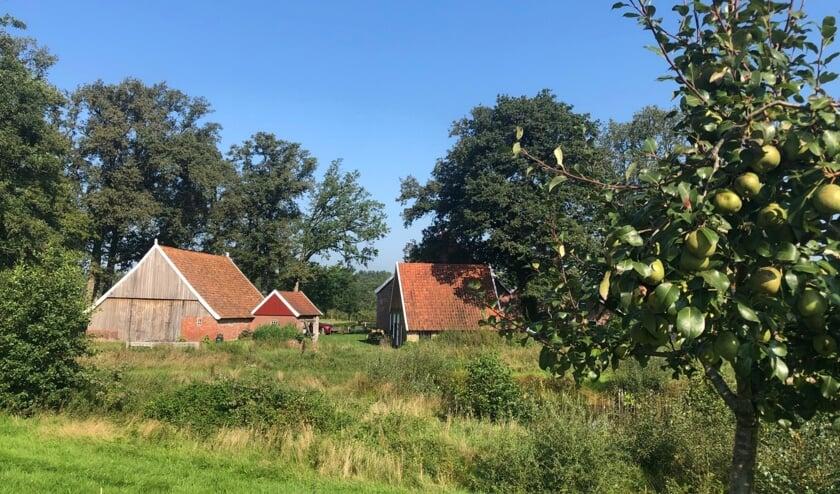 Keunenhuis gezien vanaf de achterzijde. Foto: Willy Stemerdink