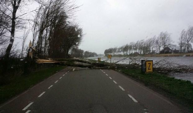 Op de Boekel langs het Noordhollands kanaal blokkeerde een omgewaaide boom de doorgang.  Foto Erik Ruigewaard © Uitkijkpost Media B.v.