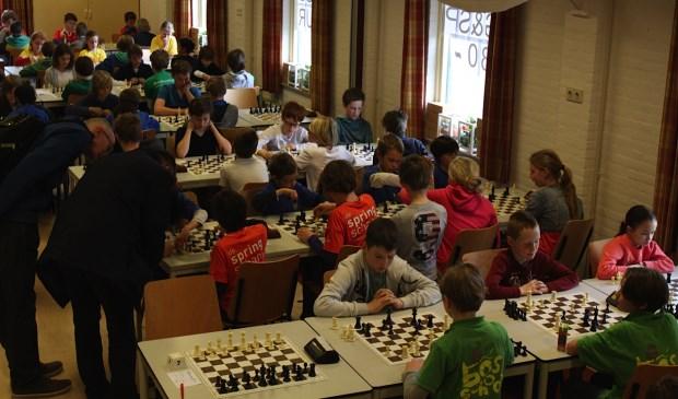 Zaterdag 28 maart werd in Krommenie een kampioenschap schoolschaken gehouden, waaraan leerlingen van de Springschans meededen, samen met de kampioenen uit een kleine dertig andere plaatsen in Noord-Holland.