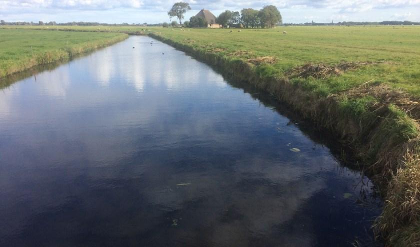 Landschap bij Castricum