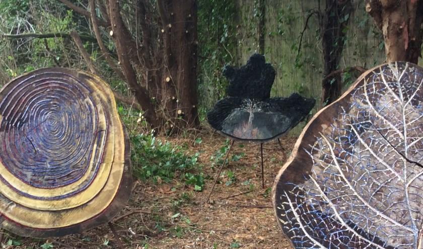 Met zijn boomhoezen geeft Garrie Oomkens een kijkje in de binnenkant van de boom.