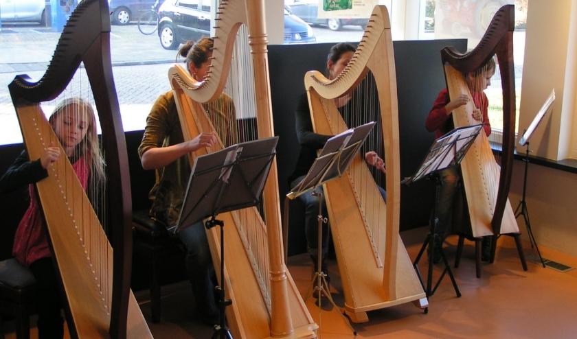 Leerlingen van de muziekschool bespelen de harp