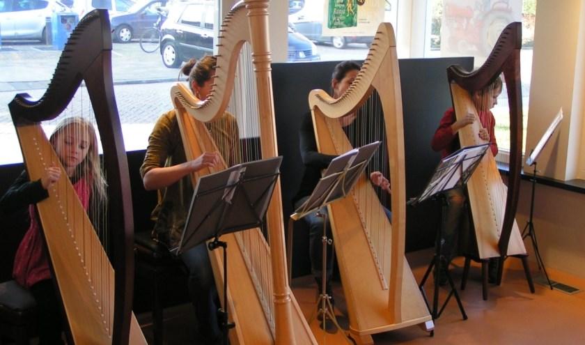 Leerlingen van De Nieuwe Muziekschool bespelen de harp.