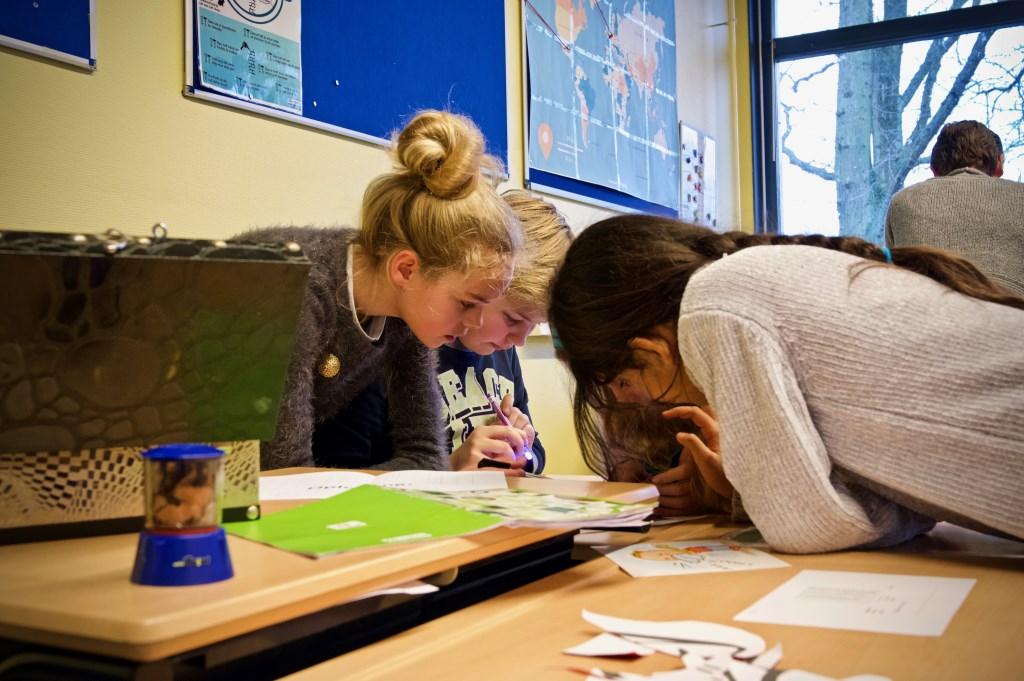 Samenwerken was heel belangrijk. Foto: STiP Fotografie © Uitkijkpost Media B.v.