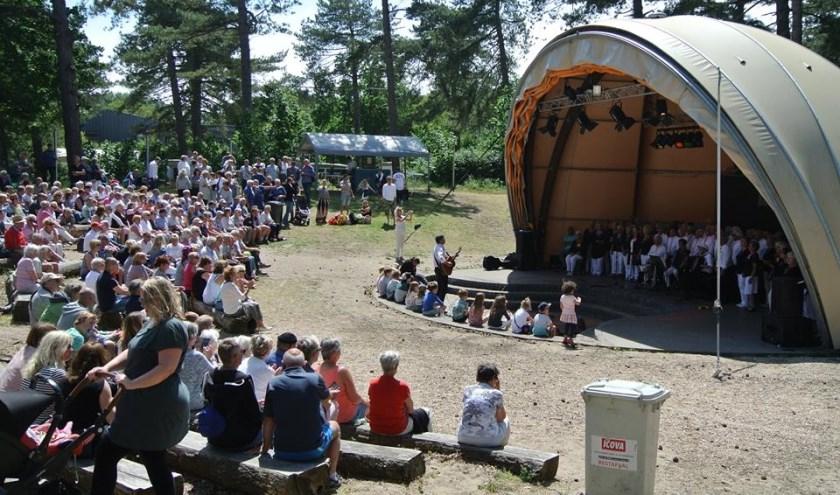 Het door De Skulpers georganiseerde festival trok veel bezoekers.