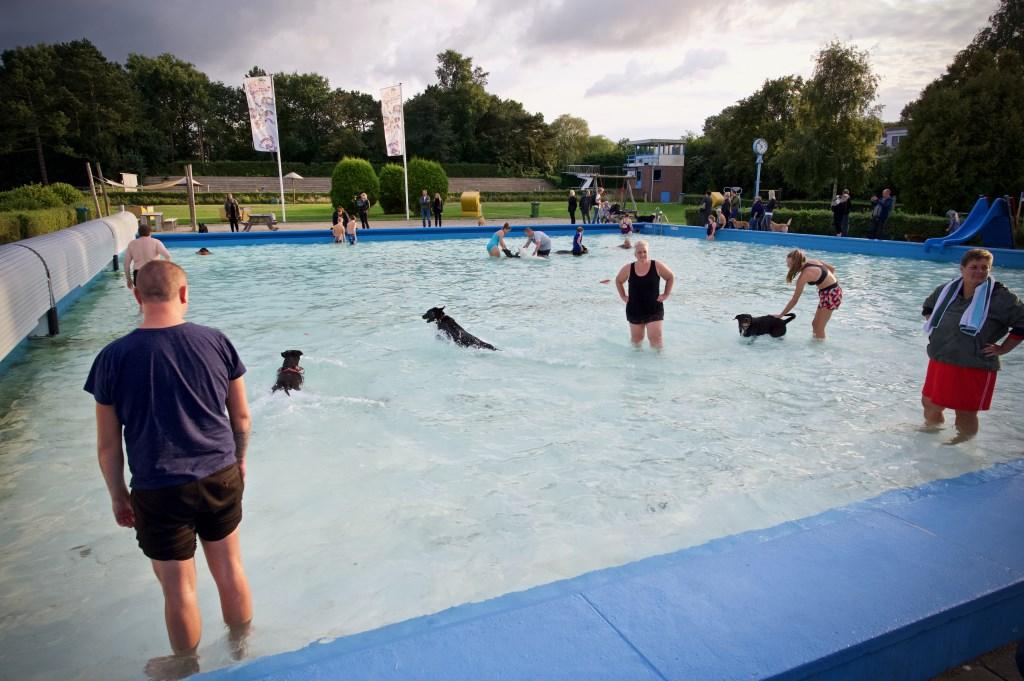 Heerlijk weer en gezellig druk in het zwembad. Foto: STiP Fotografie © Uitkijkpost Media B.v.