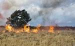 Clusiusleerlingen assisteren bij bosbrandoefening