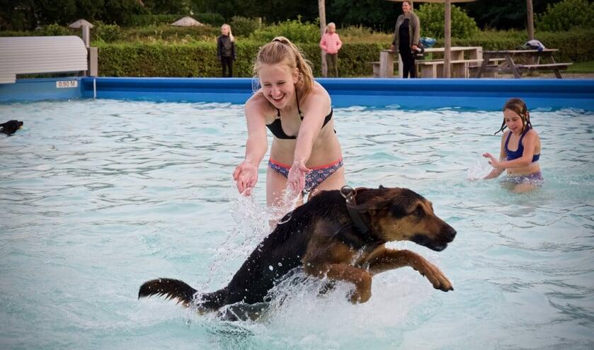 Ook de baasjes genieten tijdens het hondenzwemmen.