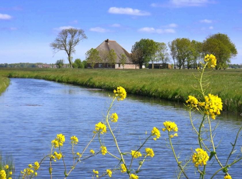 Door middel van goed overleg met overheidsinstellingen, andere instituten en particulieren zet de Stichting Alkmaardermeeromgeving zich in voor behoud en verbetering landschapskwaliteit